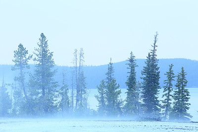 Evening mist at West Geyser Basin, Yellowstone, WY. © 2013 Kenneth R. Sheide