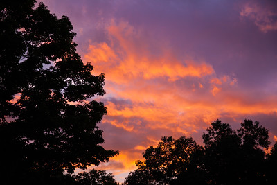 Parrish Sky, 2015 Discovery Center - In My Own Backyard