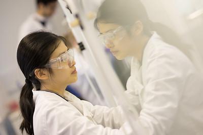 Undergraduate Cell Culture