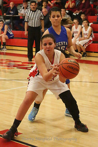 D1A Girls Springer v Questa 3-2-2013_4354