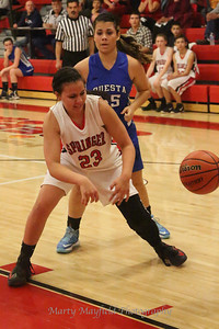 D1A Girls Springer v Questa 3-2-2013_4355