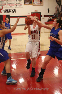 D1A Girls Springer v Questa 3-2-2013_4365