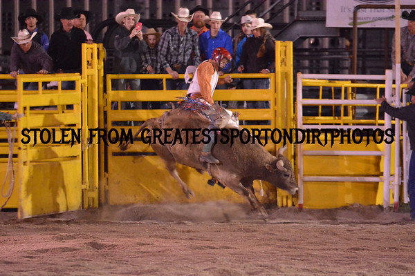Downey rodeo