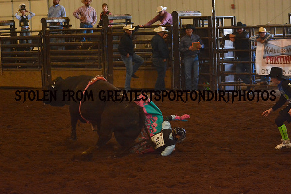 Preston Rodeo (Apr 26 + 27)