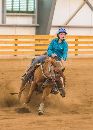 Western Reining and Games