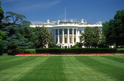 white house, front lawn
