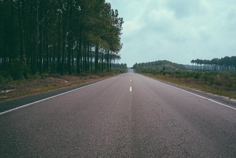 Road (France 2014)