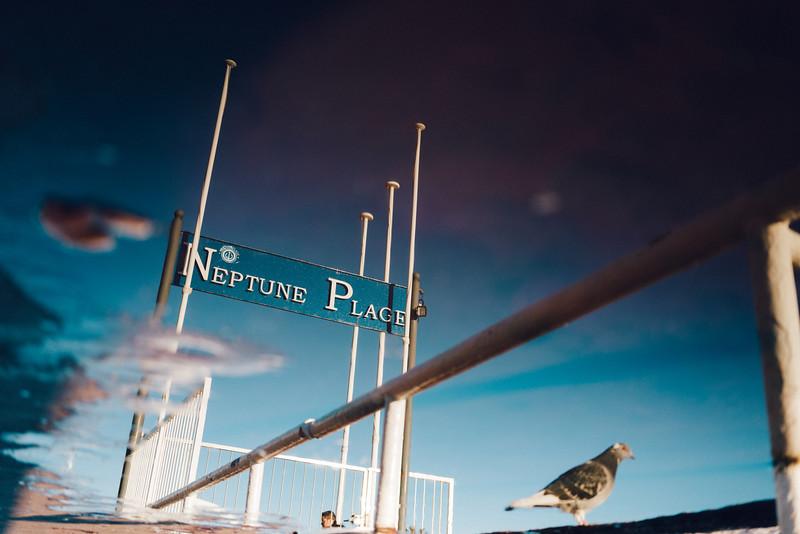 Neptune Plage
