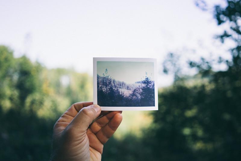 Polaroid Landcamera