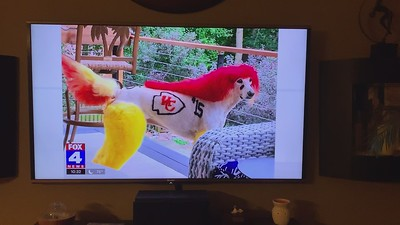 Mochi hits the big time on TV