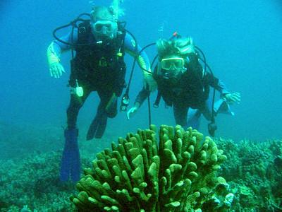 Mr Jim and Teri 20030222_211-1169_img EDIT1
