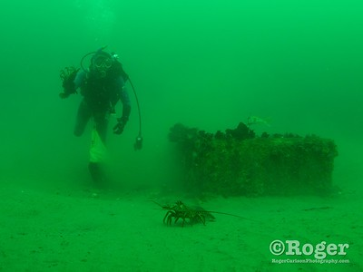 Diver FrankG collecting lobster