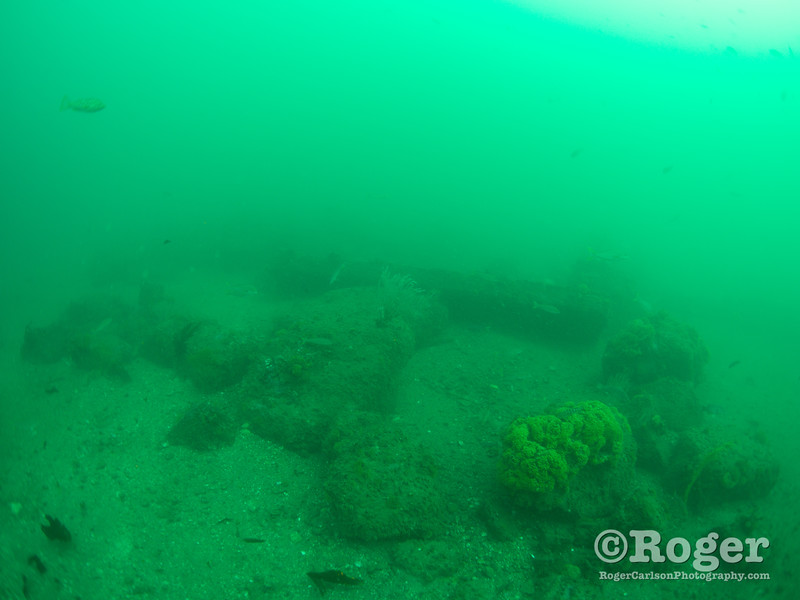 Pipefarm reef at Redondo Artificial Reef