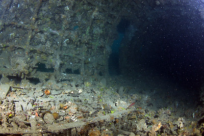 Cochrane Artificial Reef, Queensland, Australia