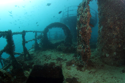 LIGHT SHIP 1 ( CLS 8 ) Cochrane Artificial Reef, Queensland, Australia
