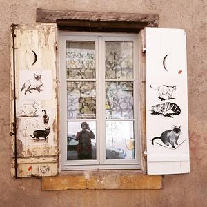 La fenêtre à chats