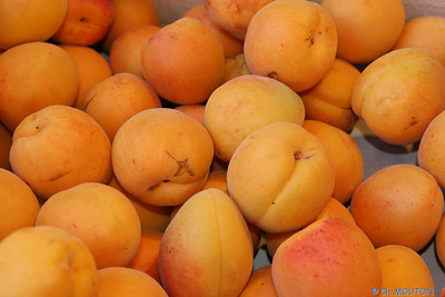Abricots C-Mouton