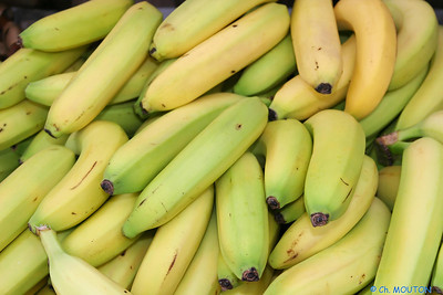 Bananes C-Mouton
