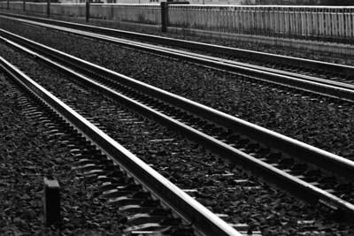 _MG_2010 -DxO-300dpi-©Ch  Mouton