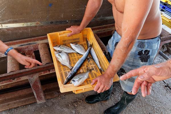 31-07-15 Visite au Calen de Port de Bouc - Maigre résultat (dorade & brochet de mer)