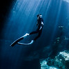 Free diving in Buford Spring