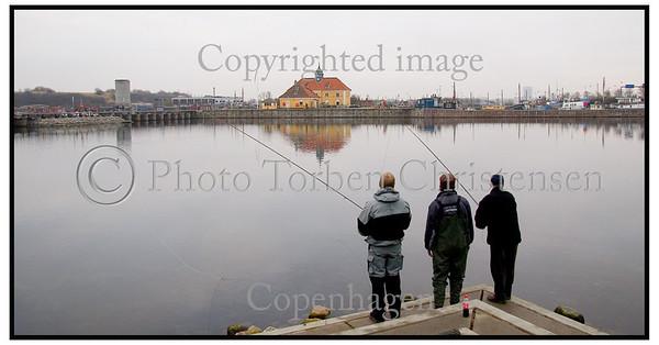 Mennesker fisker Sydhavnen 2004