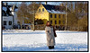 Bygninger i Brede i Sne hest Bryndis. Foto: Torben Christensen  København ©