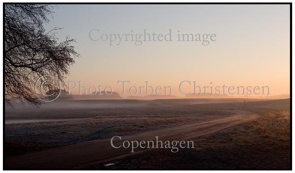 Dyrehaven, Eremitagen ved hjortekærsvej i solopgang med tåge. Foto: Torben Christensen  København ©
