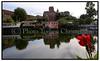 Sensommer i København. Inga nyder en kop kaffe, det gode vejr og den smukke udsigt søndag sep. 04.2005 i Kolonihaveforeningen FREM . Skjult for de forbikørende der kører ind mod København ad Folehaven, ligger kolonihaveforeningen FREM, godt godt gemt bag store grønne buske . De 40 huse i i den lille grønne oase ligger rundt om en lille 10 meter dyb sø, Kirkesøen, der er Københavns dybeste. (Foto: Torben Christensen / Scanpix 2005) . Foto: Torben Christensen  København ©  Ayoe Bryndis