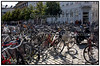 Masser af cykler på Højbro Plads. Foto: Torben Christensen  København ©