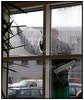 Vinduespudser pudser vinduer i en kontorbygning. Foto: Torben Christensen  København ©