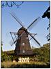 Fuglevad mølle på Frilandsmuseet, opført i 1832 af en velhavende møller fra Lyngby. er en såkaldt hollandsk mølle. Typen blev opfundet i Holland og indførtes i Danmark i 1700-tallet, men blev først almindelig i løbet af 1800<br /> <br /> . Foto: Torben Christensen  København ©