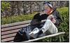 Ældre dame sidder på en bænk i solen i Landbohøjskolens Have og læser i en bog og ryger en cigaret . Foto: Torben Christensen  København ©