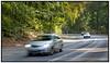Biler i fart kører på landevej i enskov i NordsjællandBiler i fart kører på landevej i en skov i Nordsjælland. Photo: Torben Christensen © Copenhagen, Foto: Torben Christensen   København ©