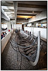 Vikingeskibsmuseet ved Roskilde Her Skuldelev 2 - Det store langskib  Photo: Torben Christensen © Copenhagen