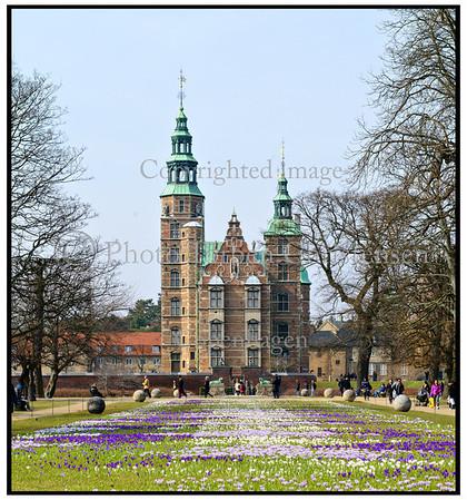 Kongens Have, Forår, Krokus, Rosenborg Slot
