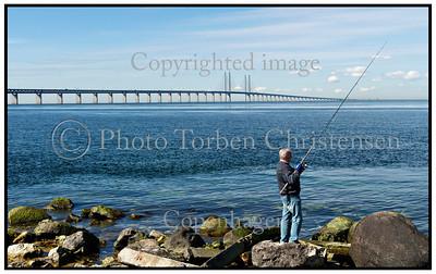 Øresundsbroen med lystfisker 2014