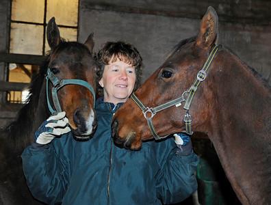 Eva CS Pettersson tillsammans med två av sina föl   Tranberga Gård 111021  Foto: Stefan Olsson / Svensk Galopp