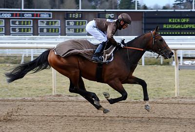 Cheerful Giver med Per-Anders Gråberg i sadeln   Kick Off Riksgaloppen 2012   Täby 120401   Foto: Stefan Olsson / Svensk Galopp