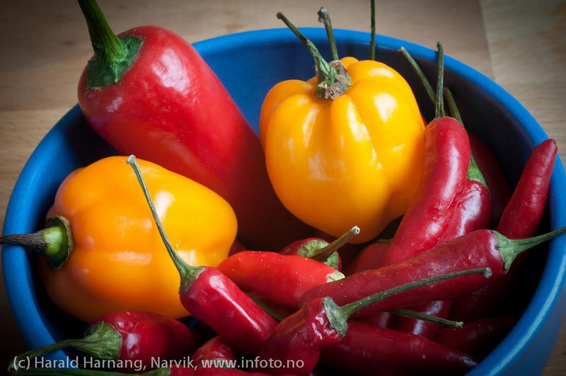 paprika, chili,
