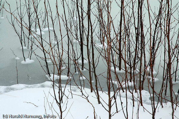 Bilde fra Infoto, Harald Harnang