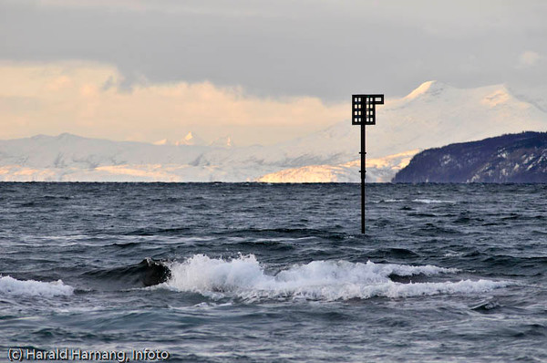 Stake utenfor Framneslia i Narvik.