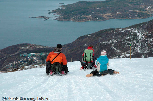 På kjelke ned fra øvre fjellheisstasjon ved slalomanlegget i Narvik. Fra 650 moh ned til nedre fjellheis-stasjon er det fint både for store og små.
