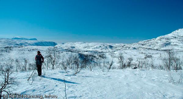 Utsikt innover mot Maridalen på Herjangsfjellet
