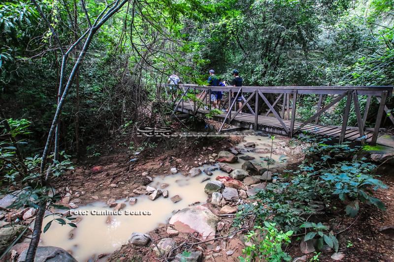 Trilha para Cachoeira do Pinga