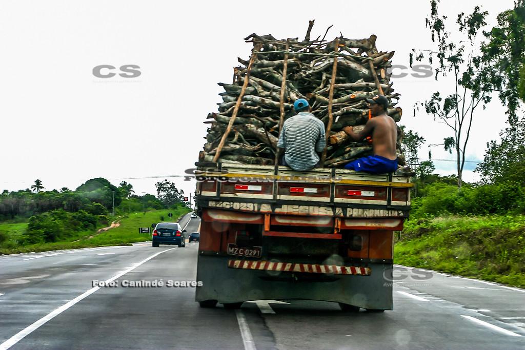 Caminhão carregado de lenha