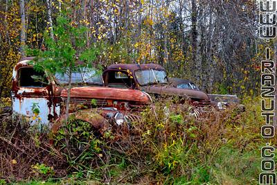 Épaves de voitures - État de New-York, États-Unis