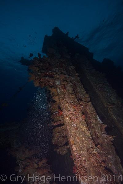 Wreck, Redsea