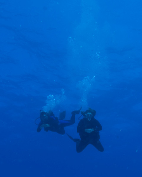 Friday dives-0007-131