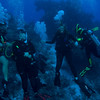 Friday dives-0014-137